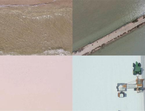 Bárba Fluxá representa a través de su arte la simbiosis industria-naturaleza que se da en las salinas marinas
