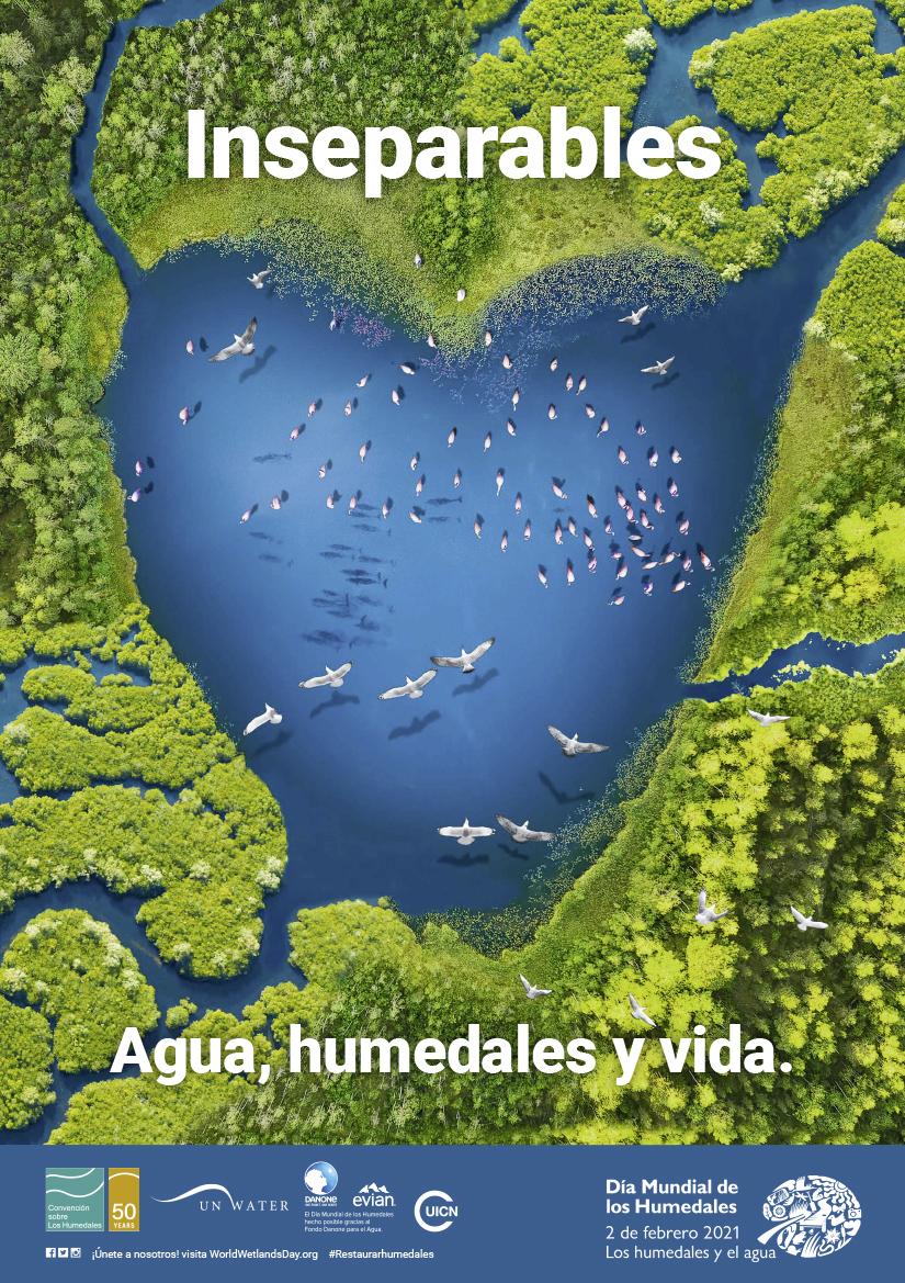 Cartel Día Mundial de los Humedales 2021
