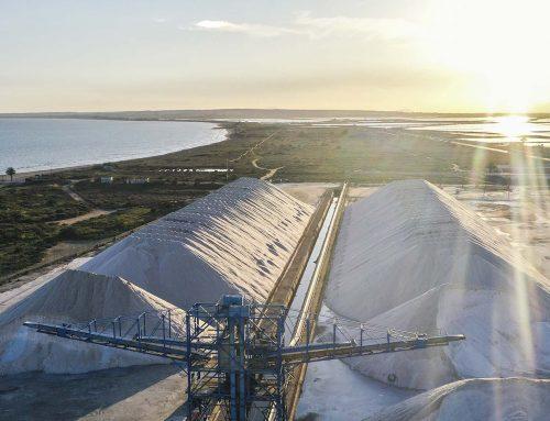 La cosecha de la sal en Bras del Port