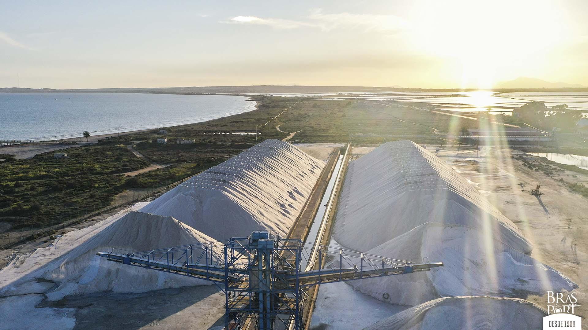 la cosecha de la sal