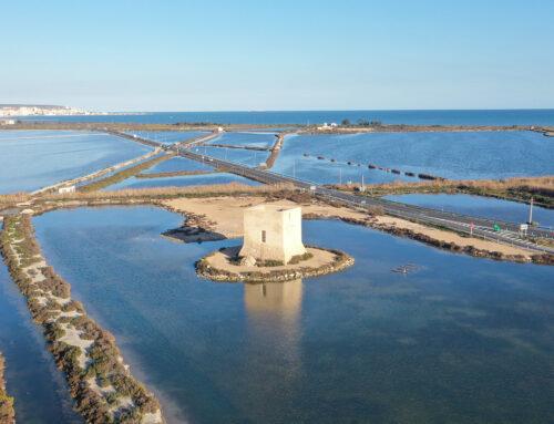 Bras del Port y el Parque Natural de las Salinas de Santa Pola